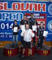 Slovak_open_2014